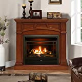 Duluth Forge Dual Fuel Ventless Fireplace-26,000 BTU, Remote Control, Finish Gas Fireplace Heritage Cherry