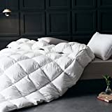 APSMILE Luxurious All Seasons European Goose Down Comforter Full/Queen Size Duvet Insert - Ultra-Soft Egyptian Cotton, 46 Oz 750 Fill Power Fluffy Medium Warmth,(90x90,Solid White)