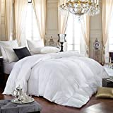 Egyptian Bedding 600-Thread-Count Egyptian Cotton Siberian Goose Down Comforter, 70 oz Fill Weight, Hypoallergenic, Solid White (King Size)